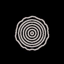 amila-no-waste-elementi-preziosi-legno-250-wood